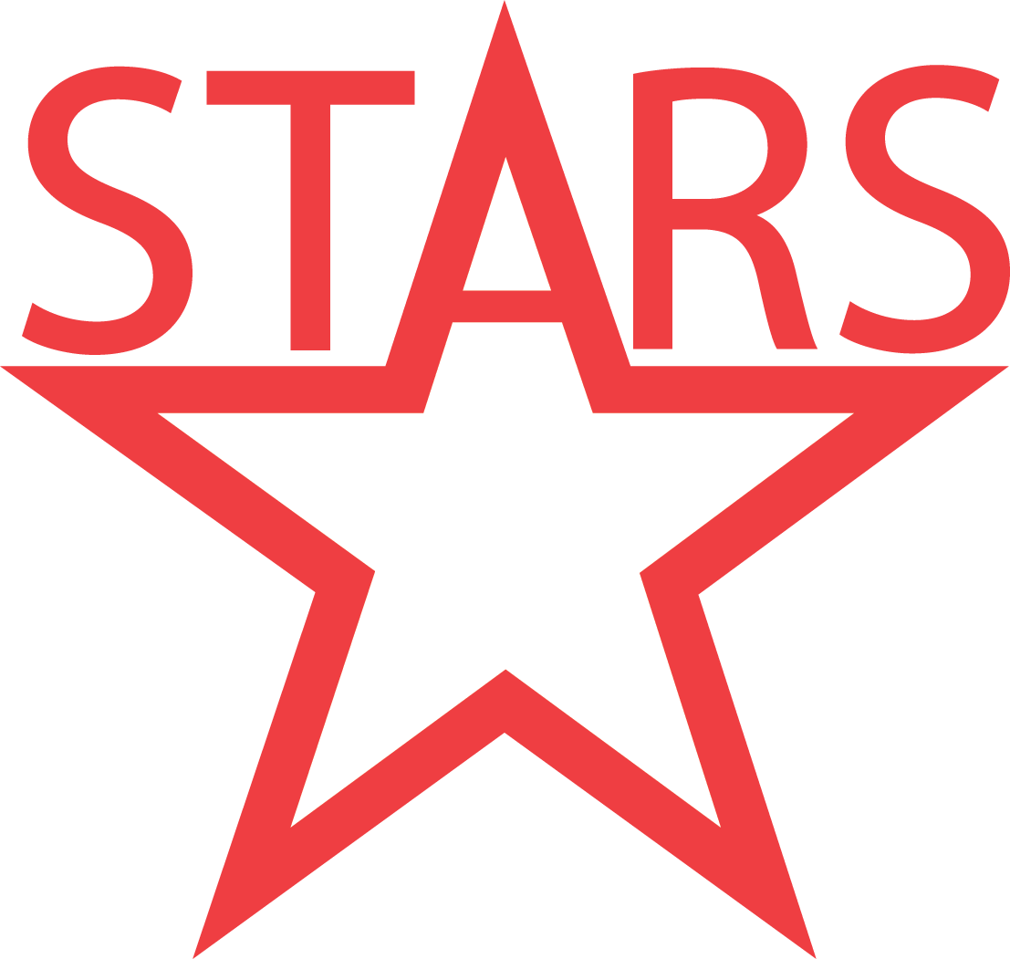 Fairview South Stars logo